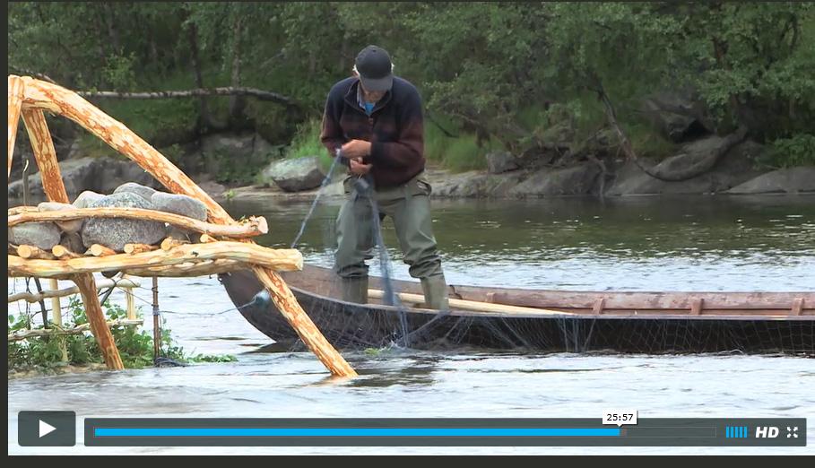 Unik film om kvensk stengselsfiske klar