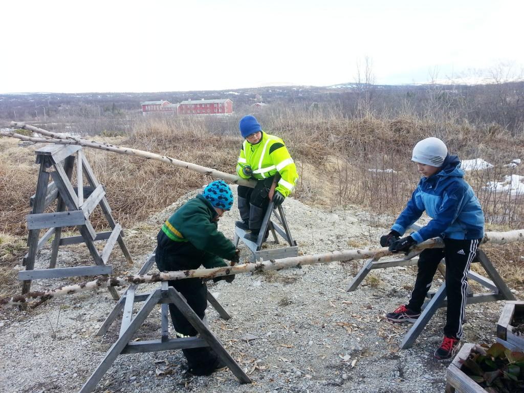 Juniorklubben måtte selv barke trær til vippebrønnen. KUVA JUNIORKLUBBEN