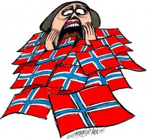 5-2015 ledertegning flagg1b