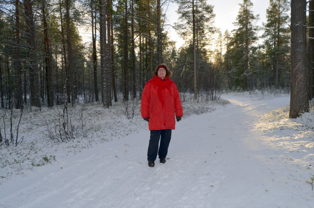 At det skal være nødvendig å måtte plassere en trafasosjan rett på en liten tjæremile i den her store skogen, er meg et mysterium, sier Åshild Karlstrøm Rundhaug. KUVAT HEIDI NILIMA MONSEN