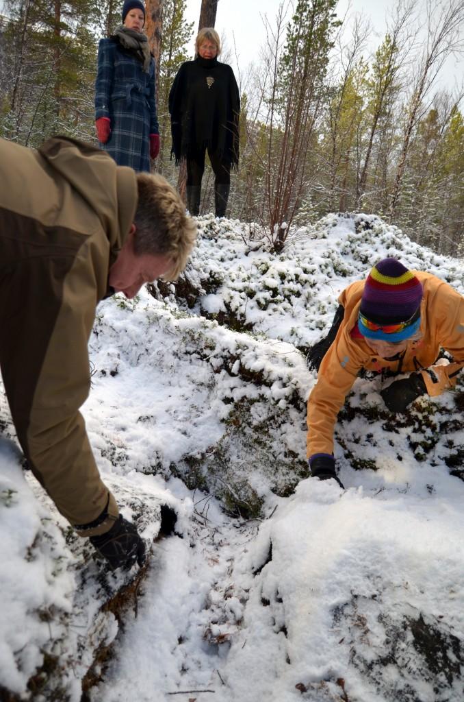 Tjæremila var dekket av vnterens første snø som om natten før befaringen.