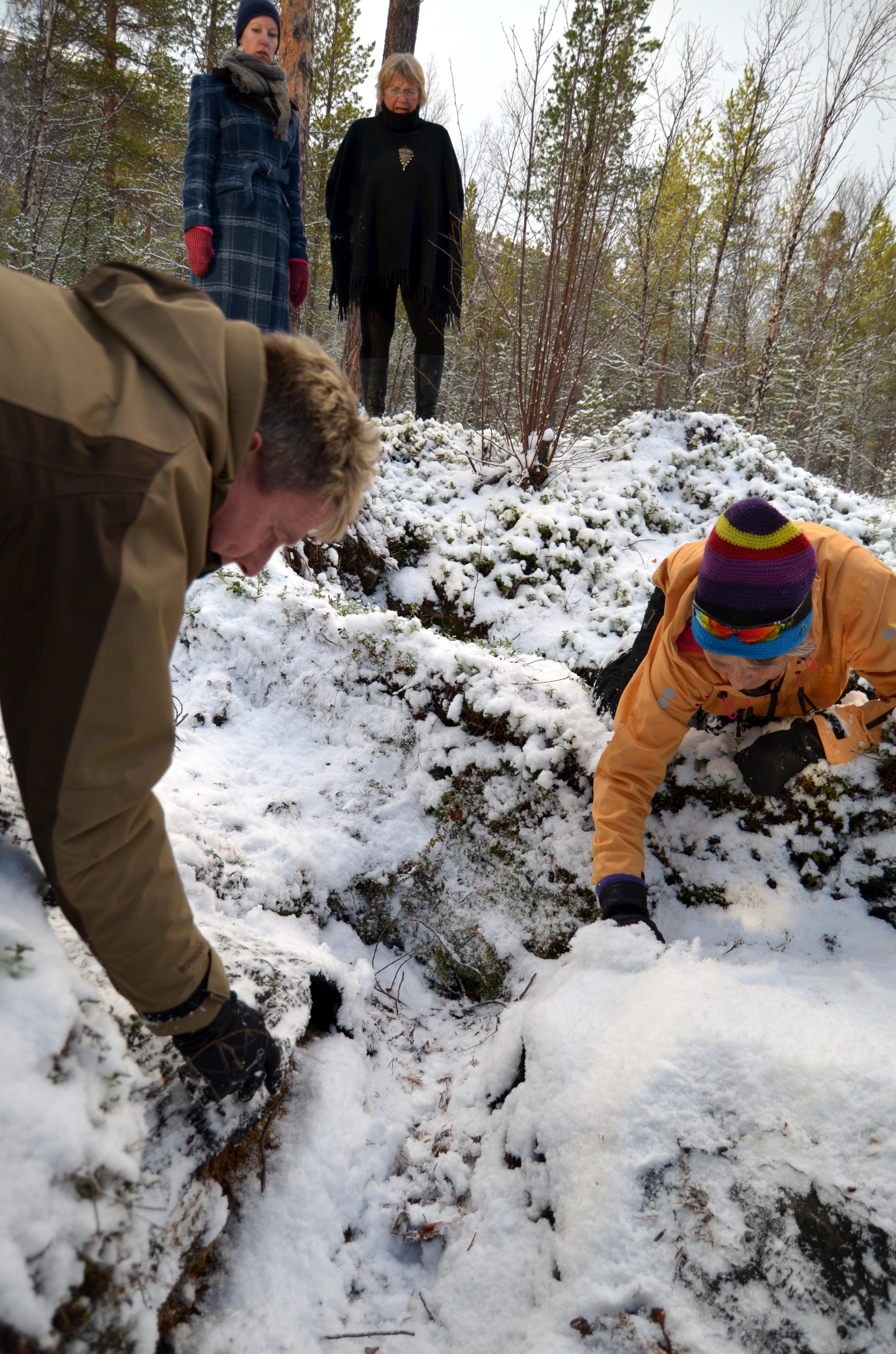 NKF/RK ber Sametinget om å støtte likestilling av kvenske og samiske kulturminner