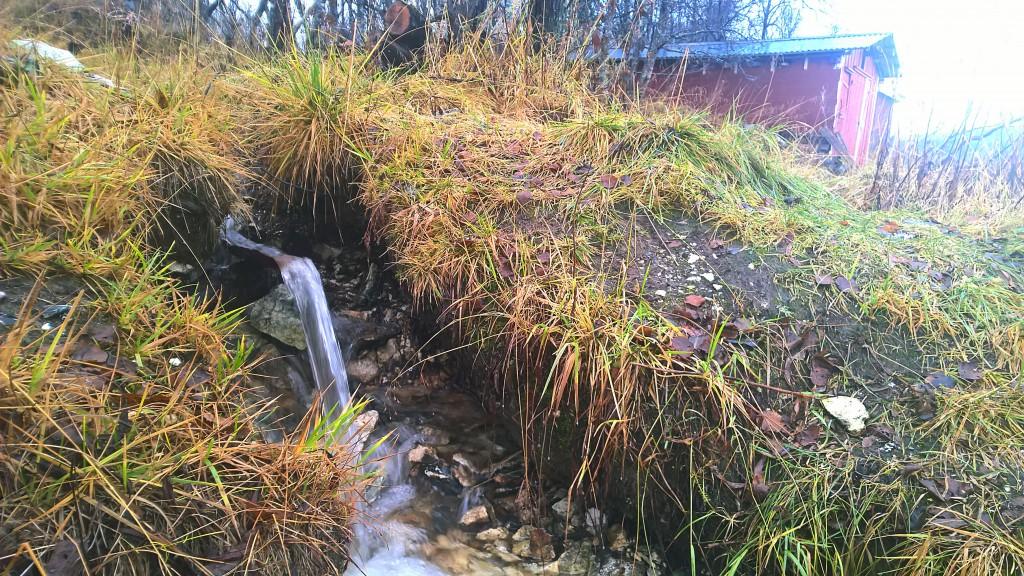 Etter mildværet og store nedbørsmengder i månedskiftet oktober-november er bekken ved badstua på nordspissen av Tromsøya igjen full av vann. Det fosser godt og det tar ikke lang tid å fylle ei bøtte. KUVA LIISA KOIVULEHTO