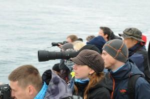 Suuret merieläimet kiehtovat kaikkia. Intensiivinen odotus palkitaan. KUVA TEA-MARI BRAX