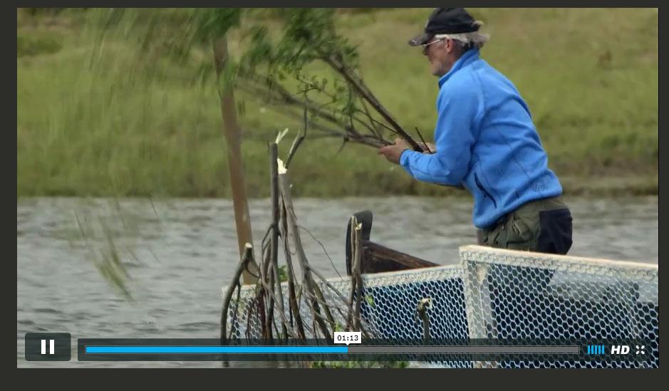 Slik drev kvenene stengselsfiske
