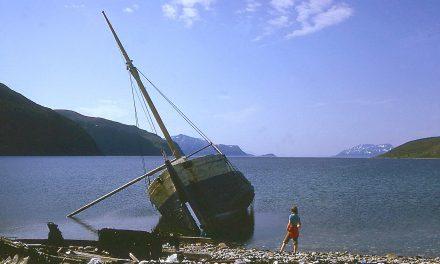 Veistoksii rannala • Skulpturer langs kysten