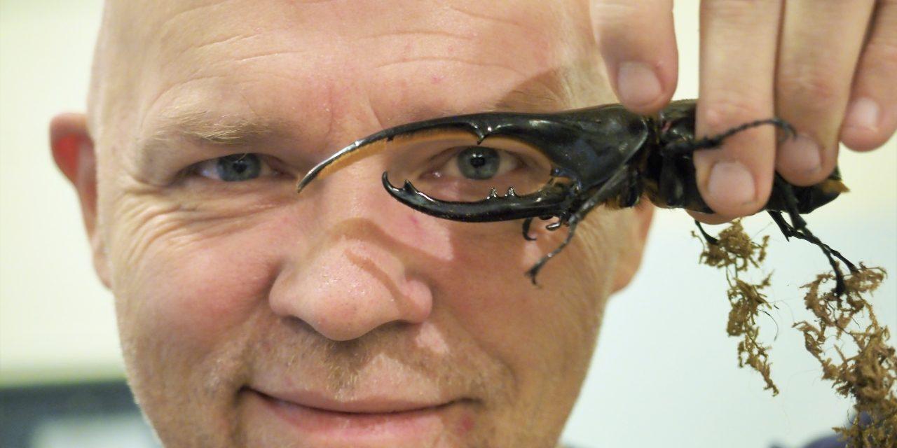 – Nyt oon hämähäkkiaika Tromssan museossa