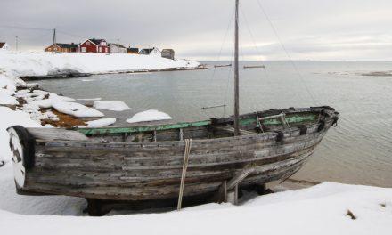 Aldrende dame • Vanhaa venet