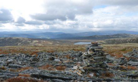 Kunne trengt flere søkere fra den norske siden