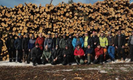 Samlet ekte tømmermenn til skogkurs