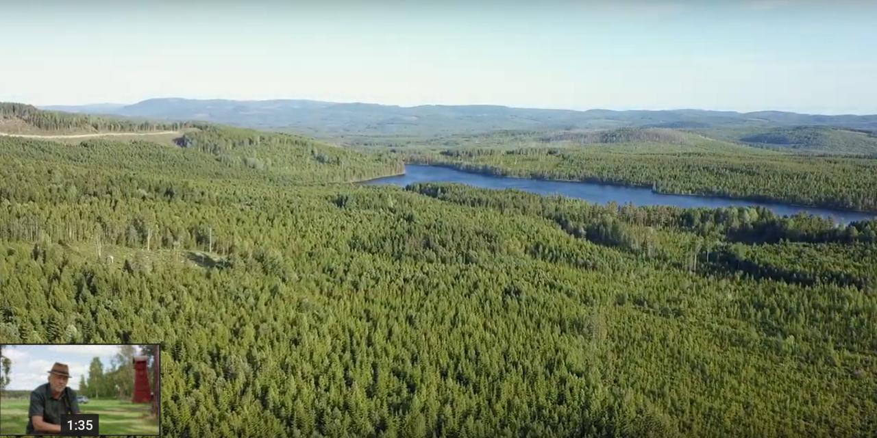 Vil du lære mer om skogfinnene?
