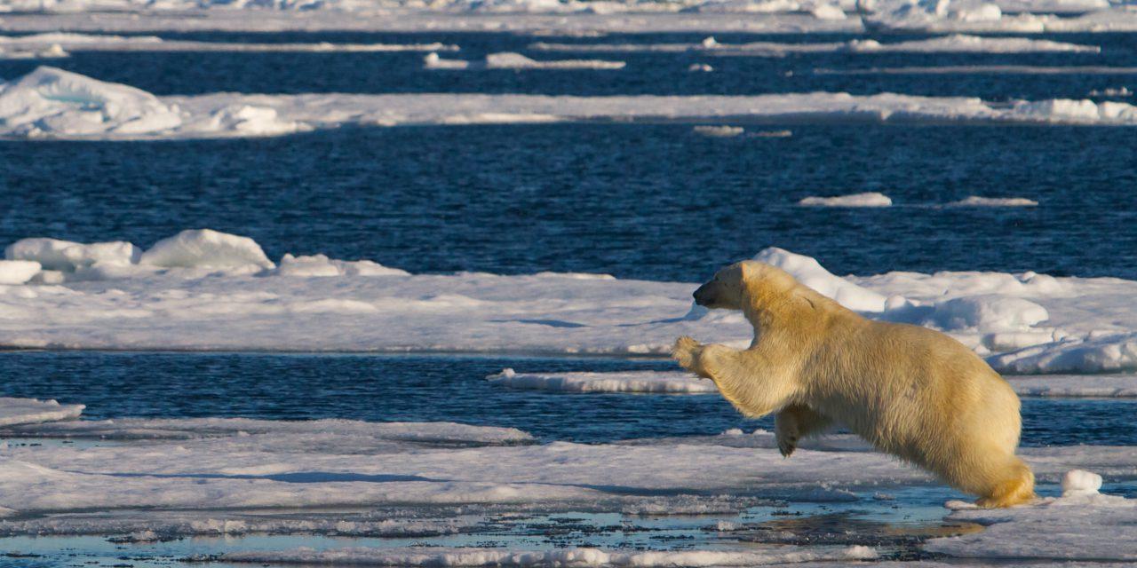 Lager klimafilm på meänkieli
