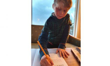 Skuffet over at Iver Isak ikke får undervisning i kvensk