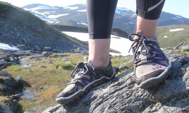 «Situasjonen i Nordland og Troms er annerledes»
