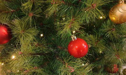 «Joulu, mitä se on?»