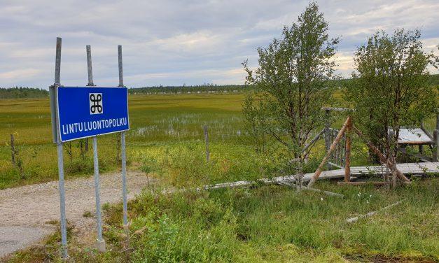 Finske fugler og en stopp verdig